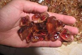 sunstone.reds.in.hand.2005.chop